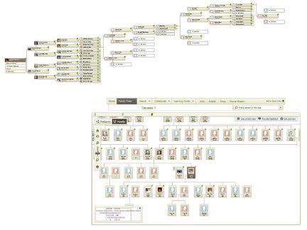 family tree combined